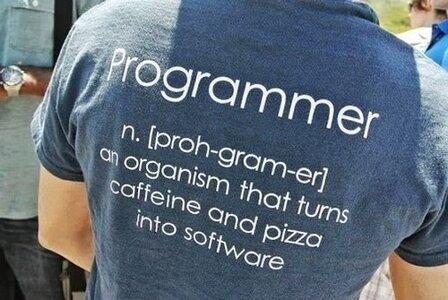 Programmer Definition.jpg