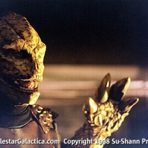 2nd-reptile01